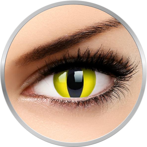 Fancy Yellow Cat – lentile de contact colorate galbene anuale – 360 purtari (2 lentile/cutie) brand Phantasee cu comanda online