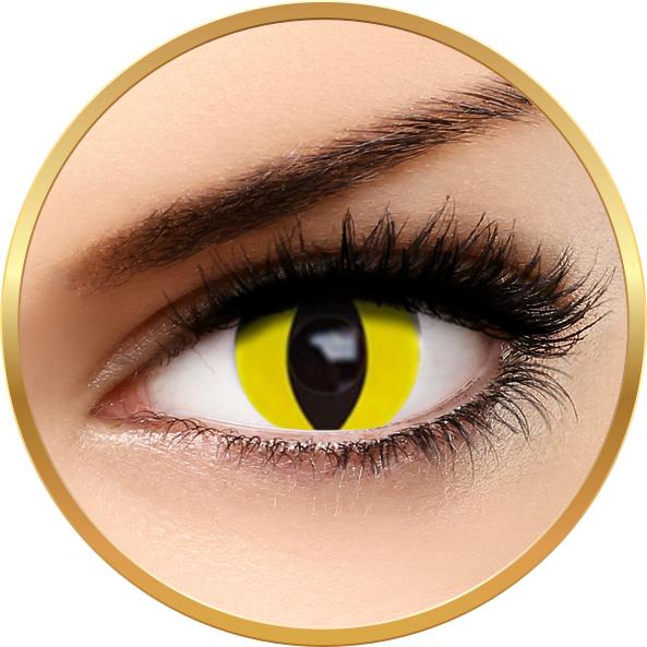 Fantaisie Yellow Cat – lentile de contact pentru Halloween anuale – 365 purtari (2 lentile/cutie) brand AuvaVision cu comanda online